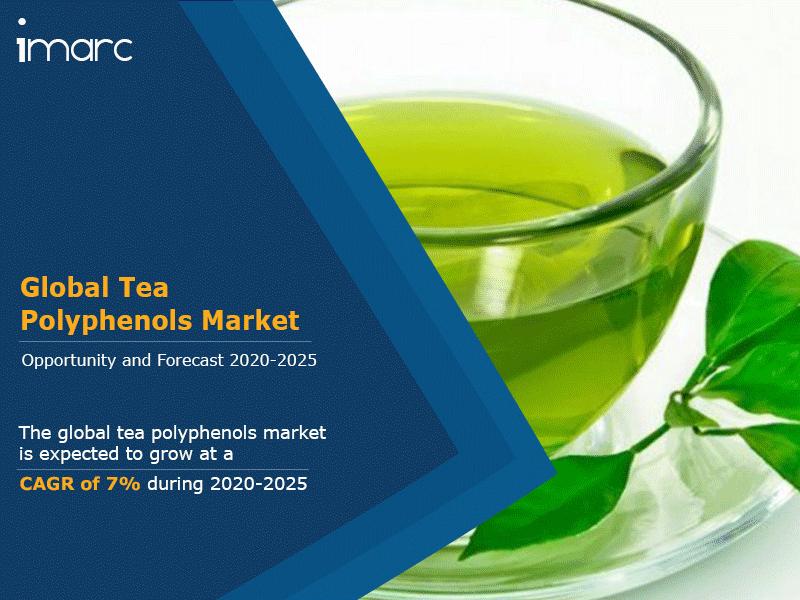 Global Tea Polyphenols Market