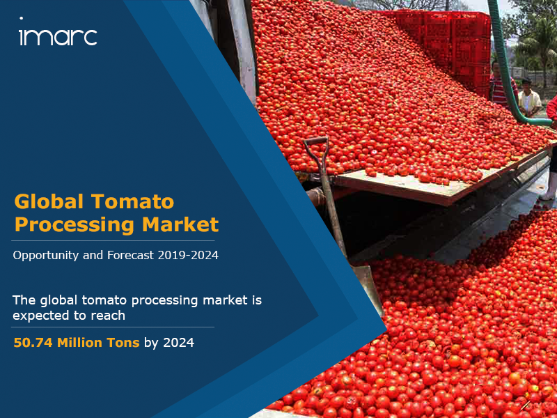 Global Tomato Processing Market Report