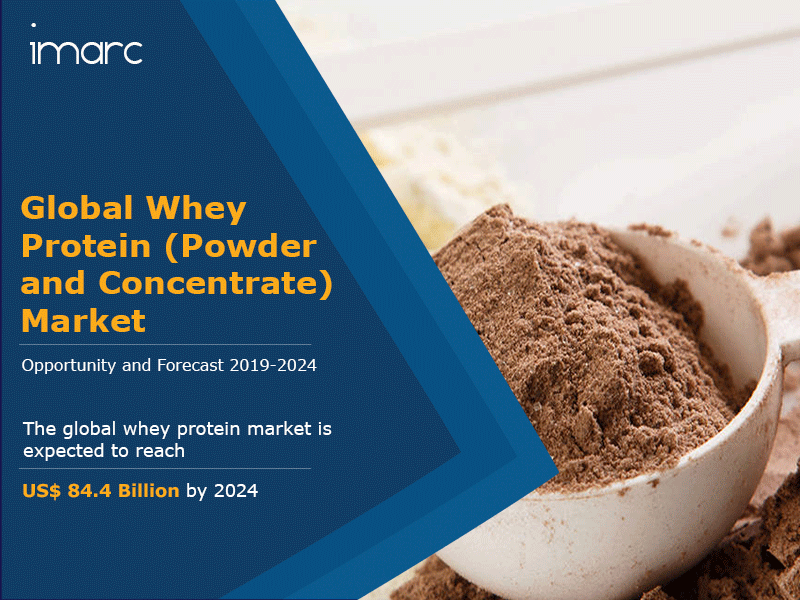 Global Whey Protein Market Report