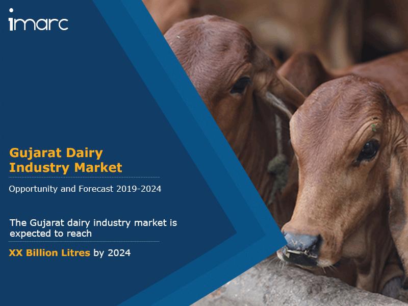Gujarat Dairy Industry Market Report