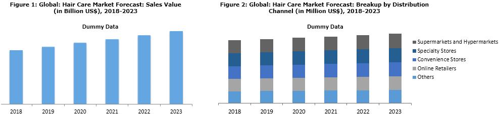 Hair Care Market Segmentation