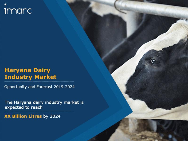 Haryana Dairy Industry Market Report