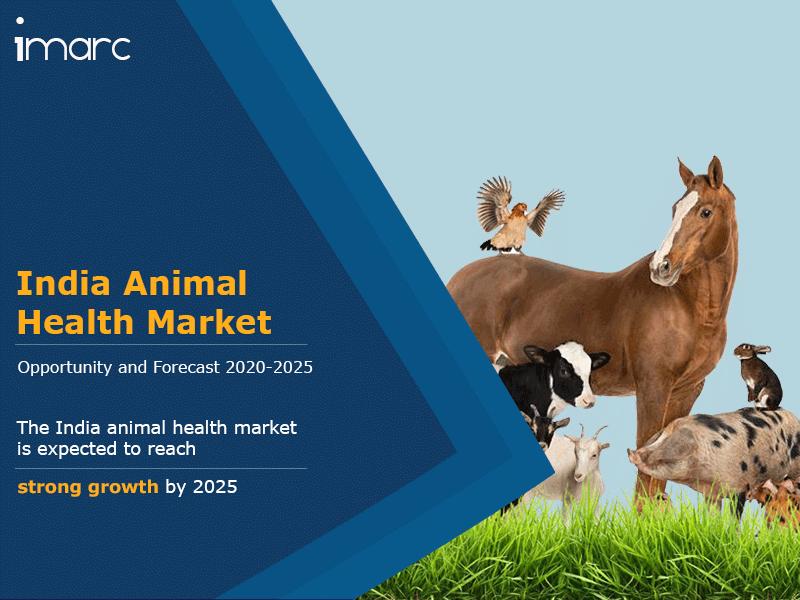 India Animal Health Market