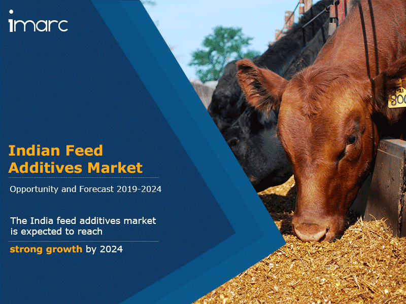 India Feed Additives Market Report