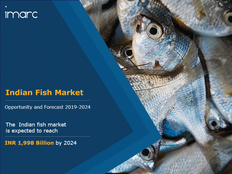 Indian Fish Market Report