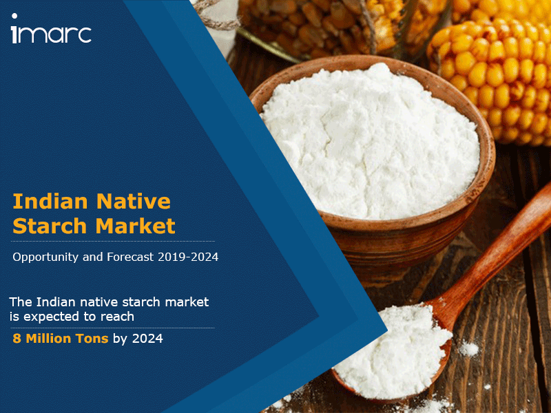 Indian Native Starch Market Forecast