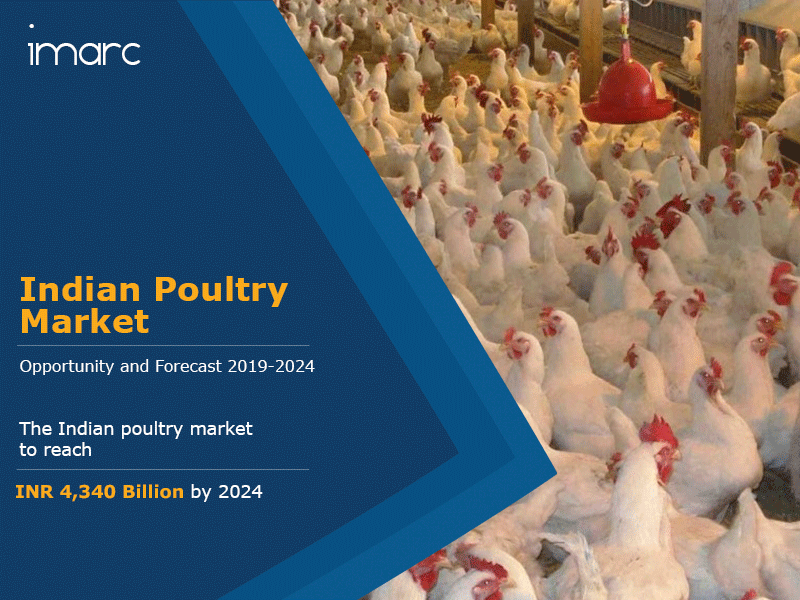 Indian Poultry Market Report