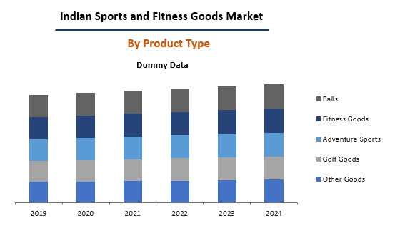 Indian Sports And Fitness Good Market By Product Type