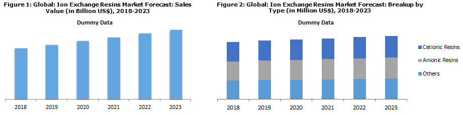 Ion Exchange Resins Market by Type