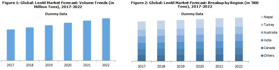 Lentil Market Prices