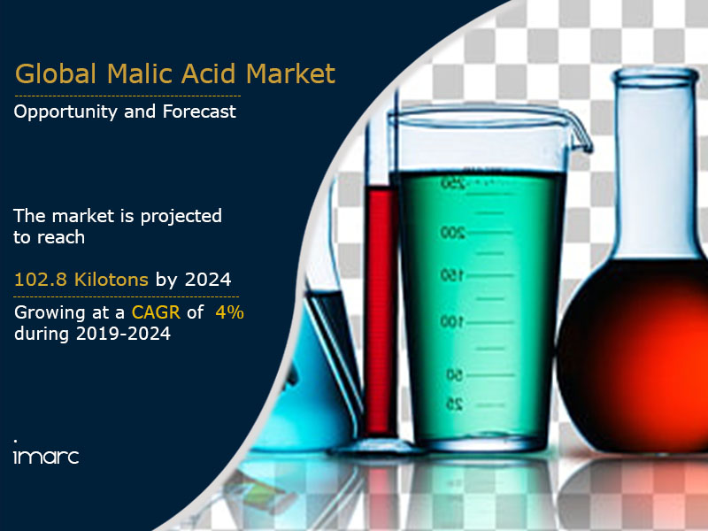 Malic Acid Market Report