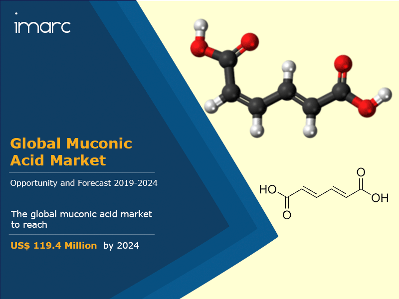 Global Muconic Acid Market Report
