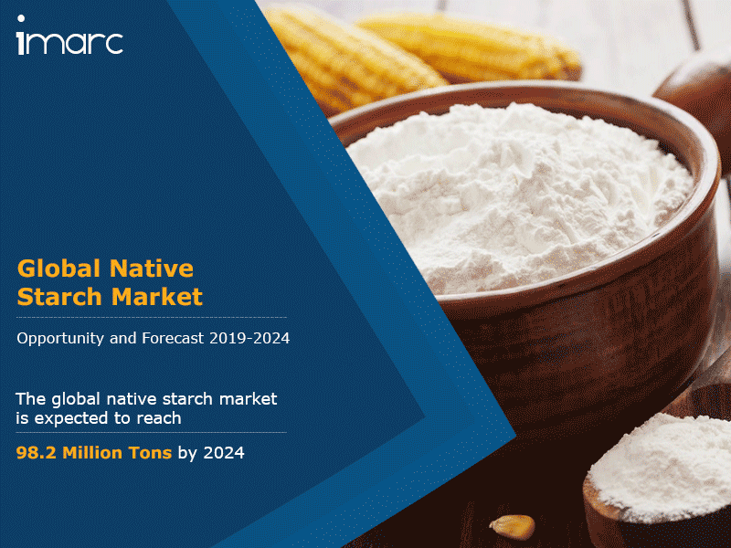 Native Starch Market