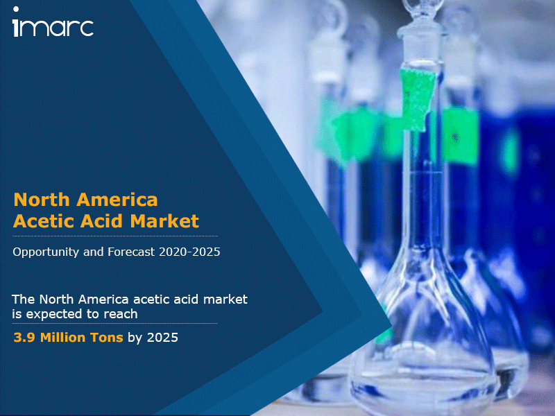 North America Acetic Acid Market