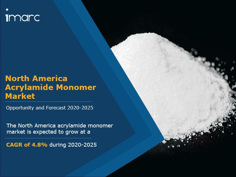North America Acrylamide Monomer Market