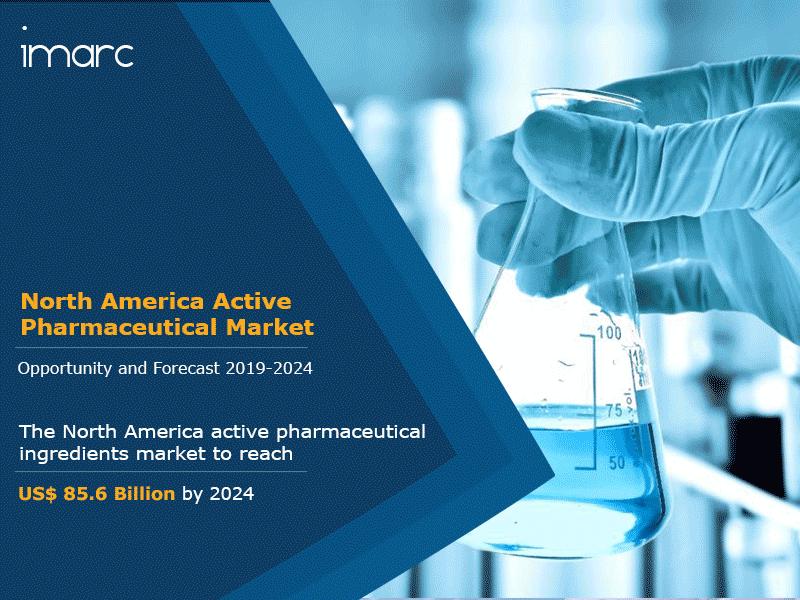 North America Active Pharmaceutical Ingredients Market