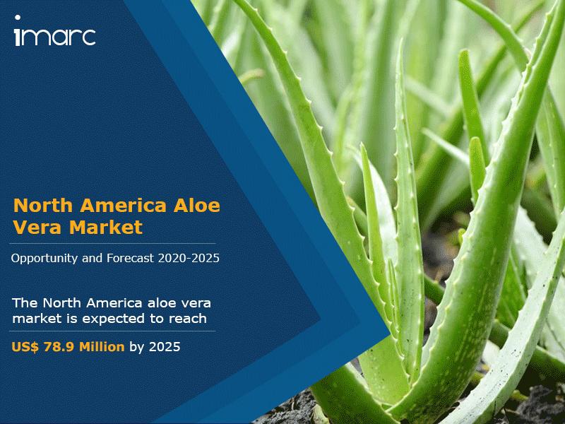North America Aloe Vera Market