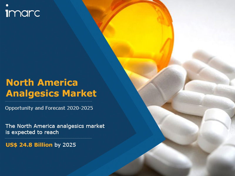 North America Analgesics Market