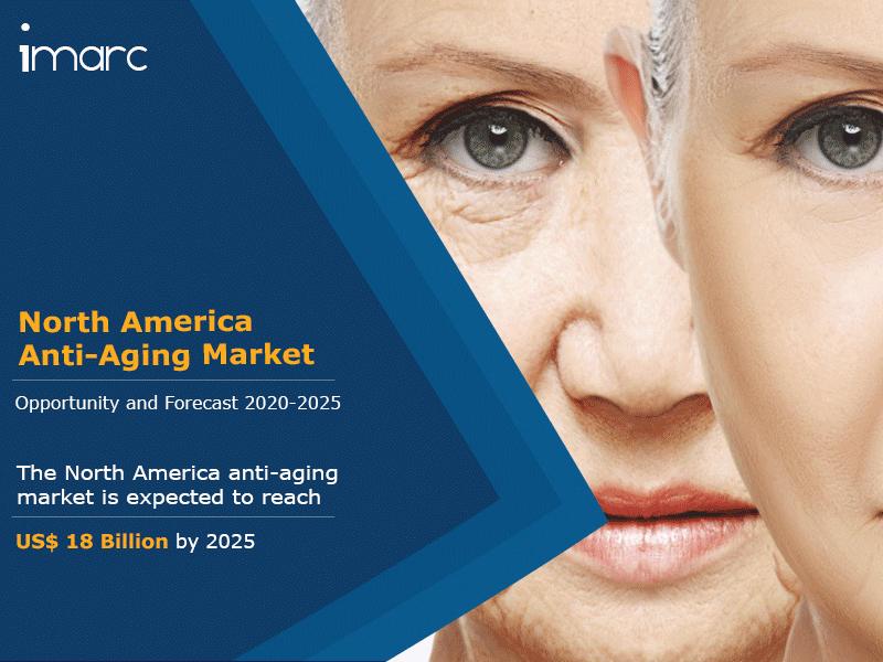 North America Anti Aging Market