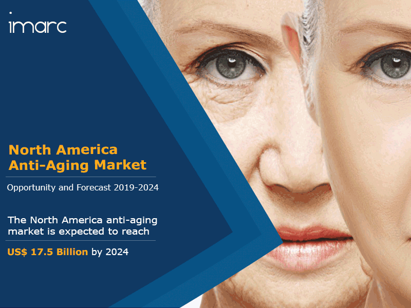 North America Anti Aging Market Report