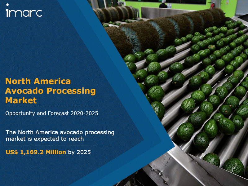 North America Avocado Processing Market