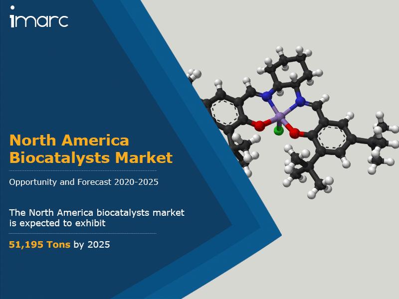 North America Biocatalysts Market