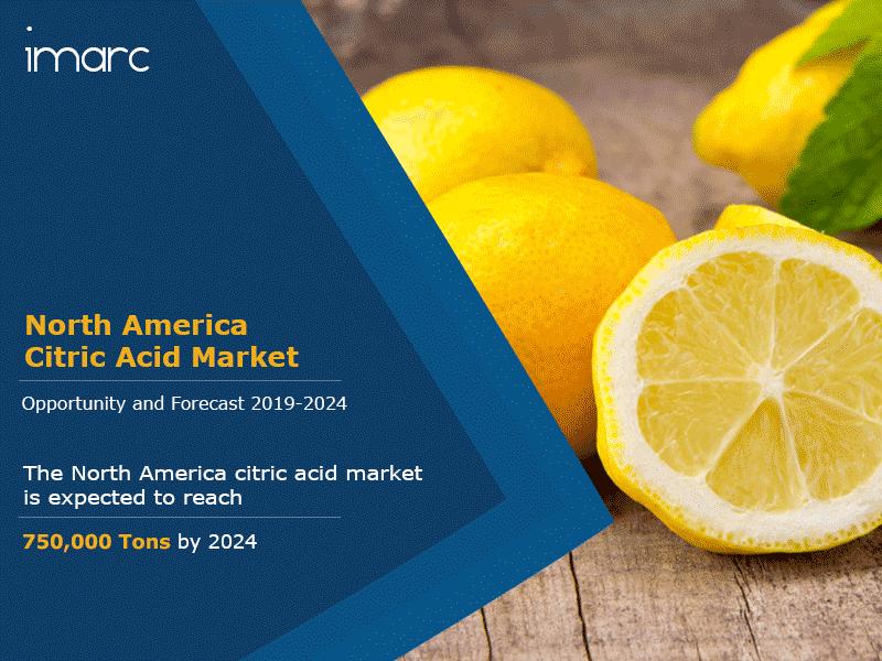 North America Citric Acid Market Report
