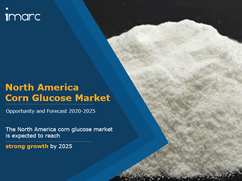 North America Corn Glucose Market