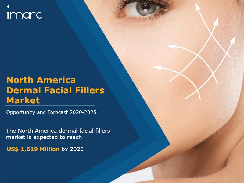 North America Dermal Facial Fillers Market
