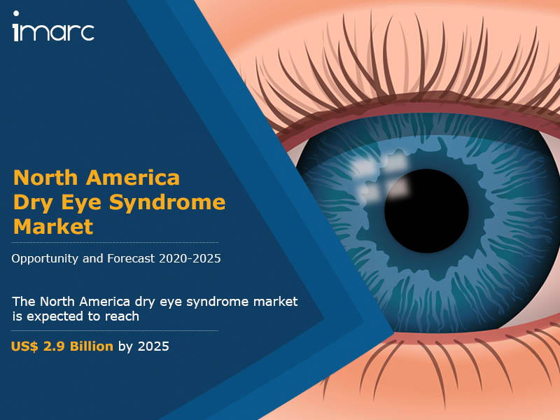 North America Dry Eye Syndrome Market