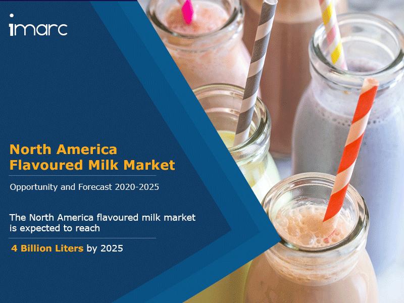 North America Flavoured Milk Market