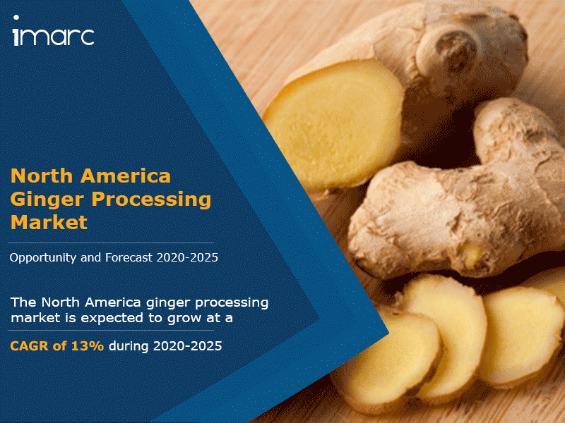 North America Ginger Processing Market