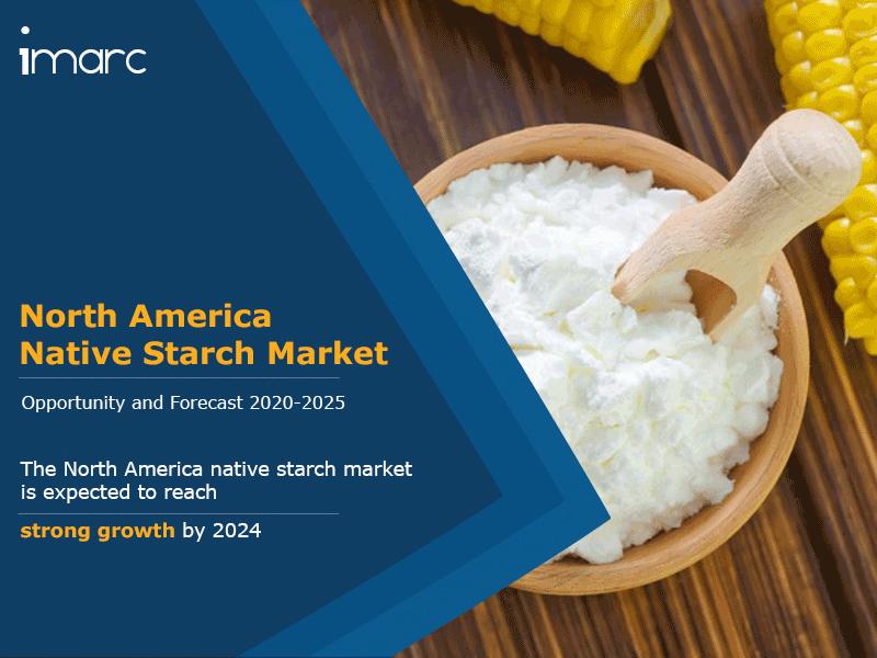 North America Native Starch Market