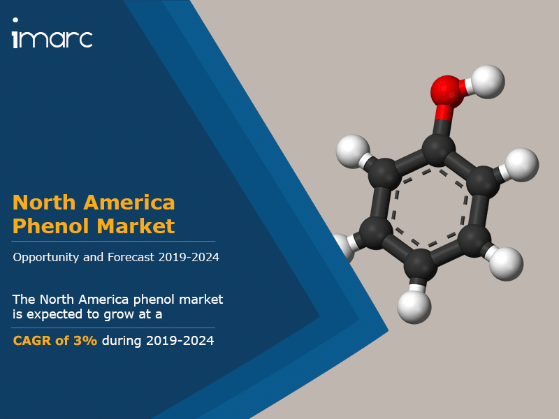 North America Phenol Market