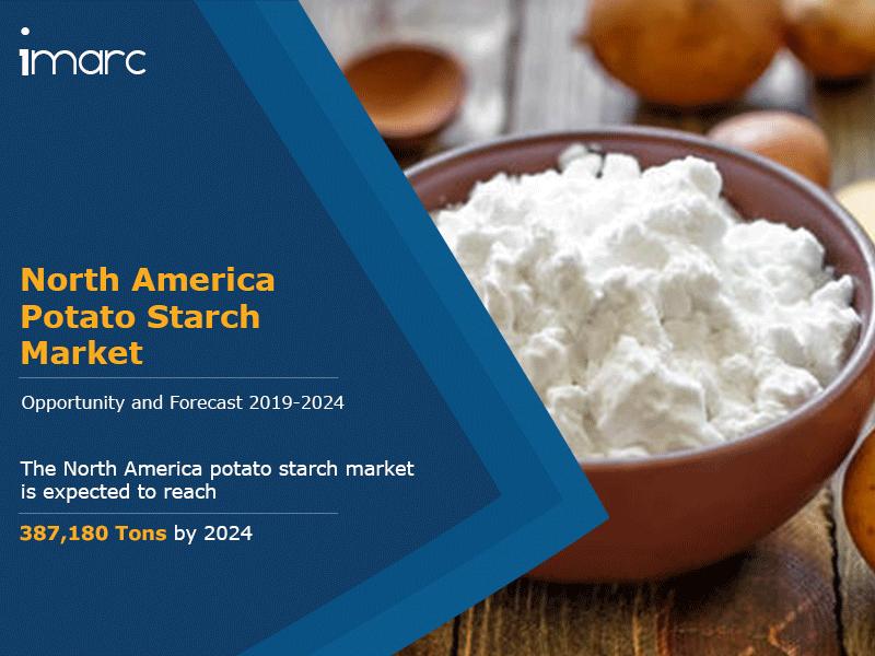 North America Potato Starch Market