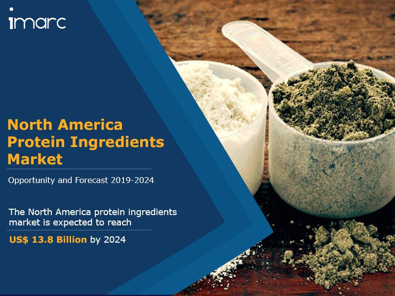 North America Protein Ingredients Market