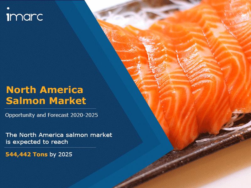 North America Salmon Market