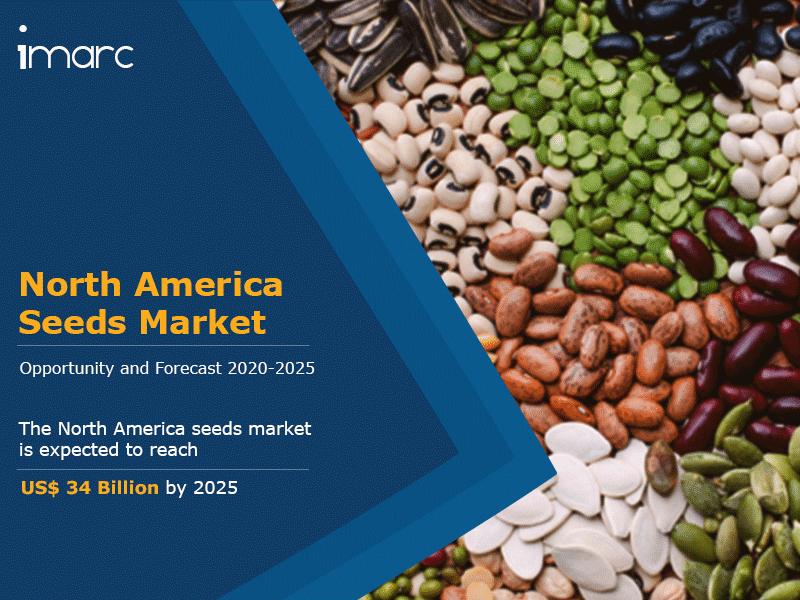 North America Seeds Market