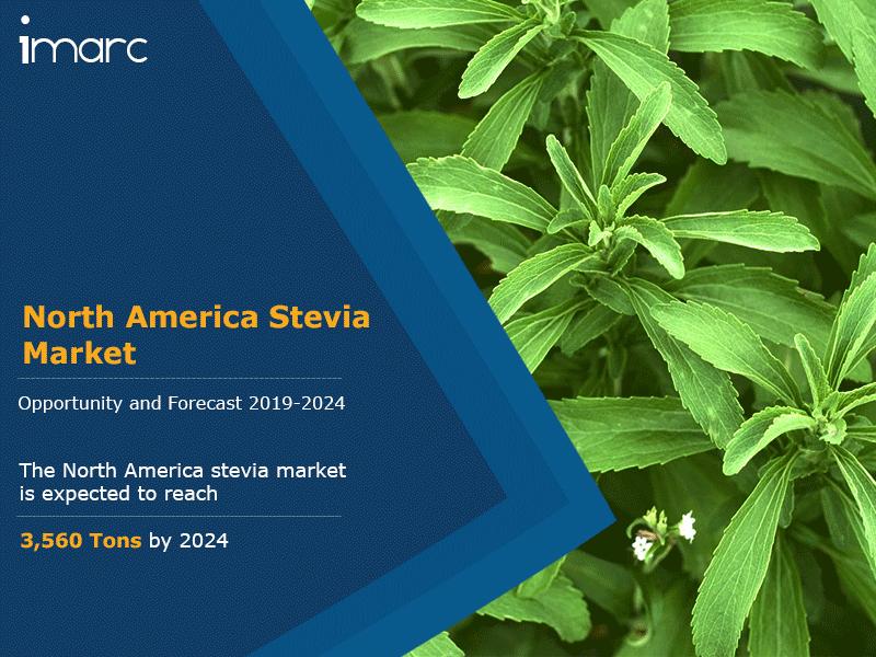 North America Stevia Market