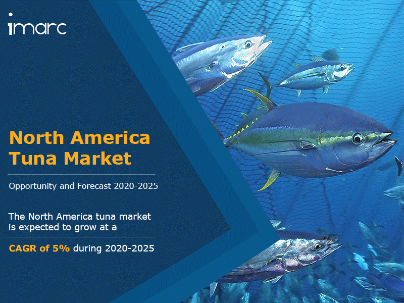 North America Tuna Market