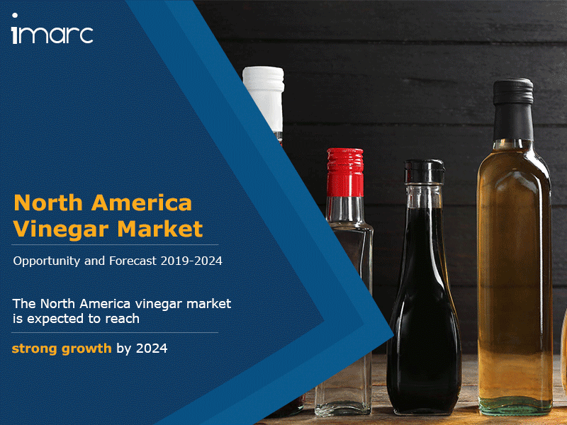 North America Vinegar Market Report