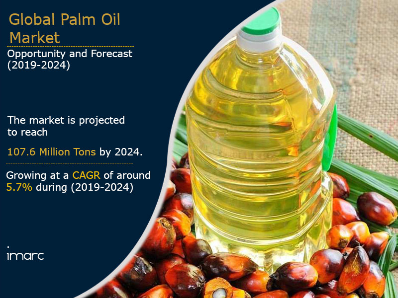 Palm Oil Market Report