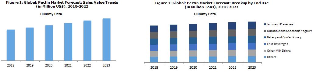 Pectin Market Report