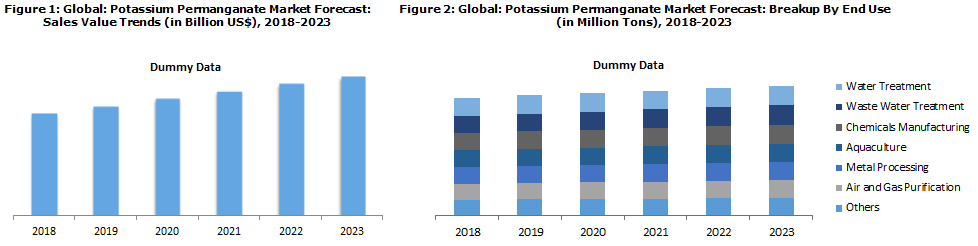 Potassium Permanganate Market Report