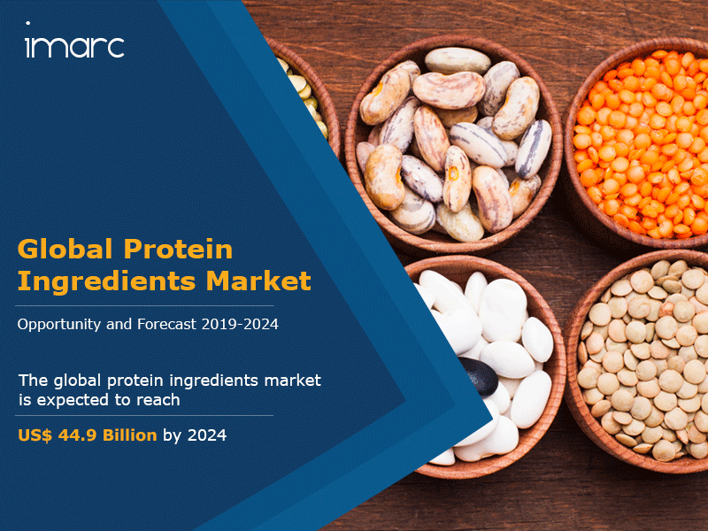 Protein Ingredients Market Report