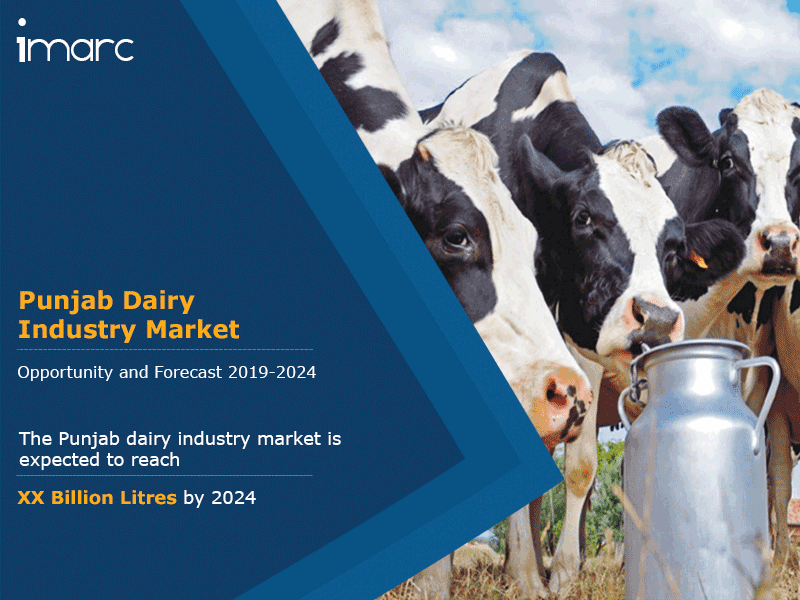 Punjab Dairy Industry Market Report