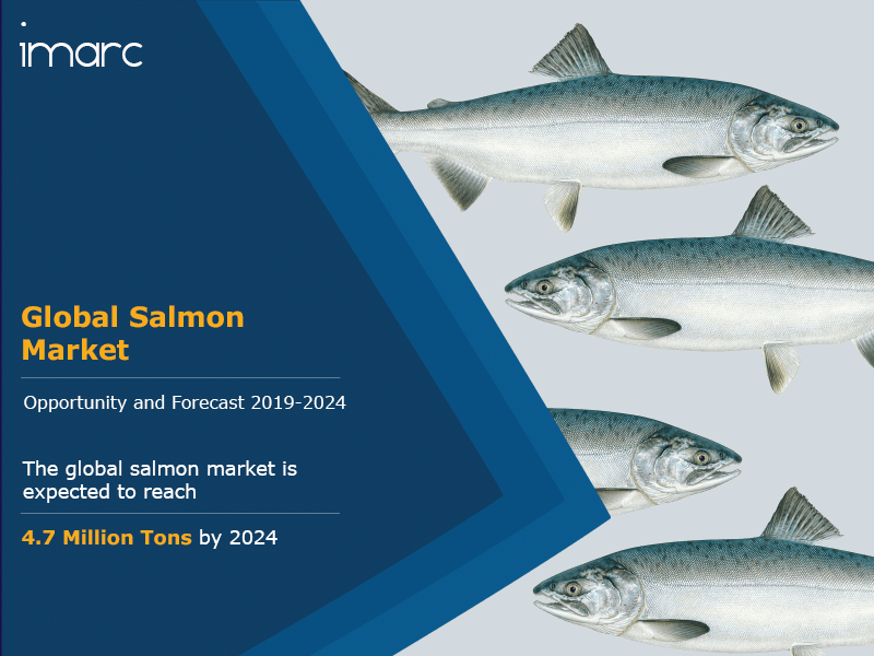 Salmon Market Report