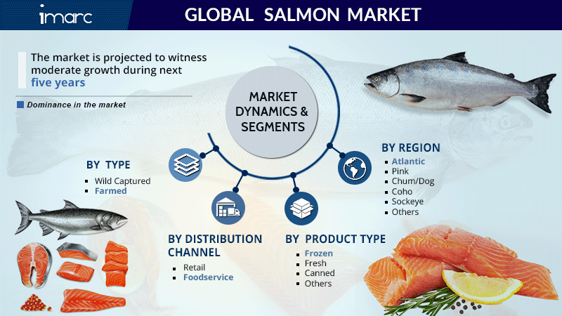 Salmon Market Research Report