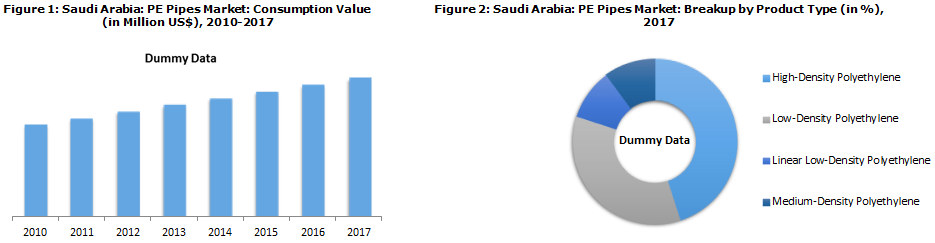 Saudi Arabia PE Pipes Market Fostered by Strong Government Support