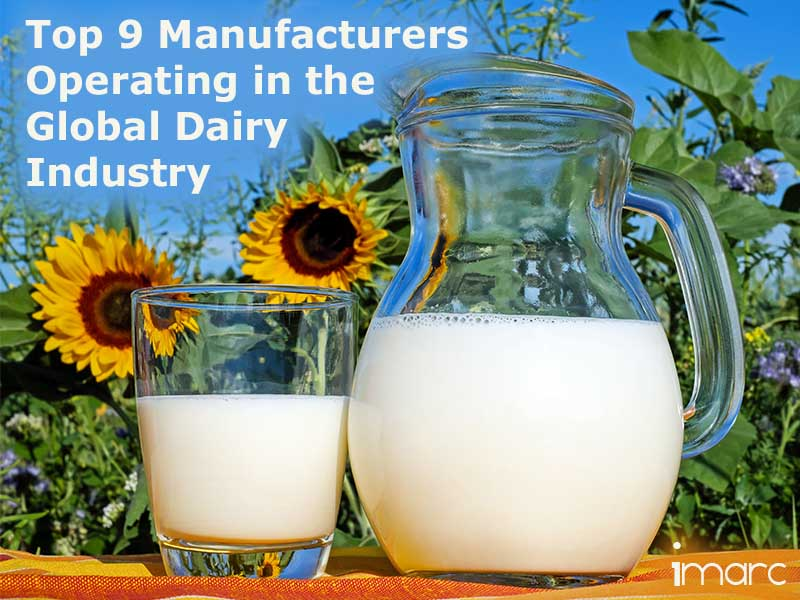 Top 9 Dairy Manufacturers Worldwide